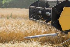 Συγκομίζοντας το κριθάρι με συνδυάστε τη θεριστική μηχανή Στοκ φωτογραφία με δικαίωμα ελεύθερης χρήσης