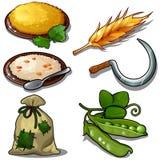 Συγκομιδή καθορισμένη - κουάκερ, ακατέργαστα πράσινα μπιζέλια, σάκος του σιταριού Φυσικά και θεματικά έξι εικονίδια τροφίμων που  διανυσματική απεικόνιση