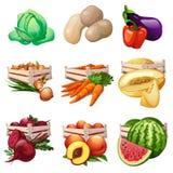 Συγκομιδή λαχανικών και φρούτων στα ξύλινα κιβώτια Λάχανο, μελιτζάνα, πιπέρι, κρεμμύδι, καρότο, πεπόνι, τεύτλο, καρπούζι, ροδάκιν Στοκ Εικόνες