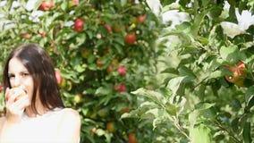 συγκομιδή μήλων Το νέο όμορφο κορίτσι μαδά ένα μήλο και που βάζει δικούς του σε ένα καλάθι φιλμ μικρού μήκους