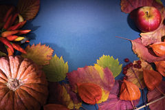 συγκομιδή πλαισίων φθινοπώρου Στοκ εικόνες με δικαίωμα ελεύθερης χρήσης