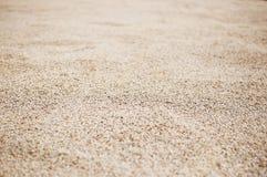 Συγκομιδή ρυζιού, σιτάρι στοκ φωτογραφία με δικαίωμα ελεύθερης χρήσης