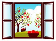 Συγκομιδή της Apple Στοκ Εικόνα