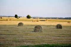 Συγκομιδή του αχύρου στο αγροτικό τοπίο στοκ εικόνες