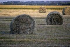 Συγκομιδή του αχύρου στο αγροτικό τοπίο στοκ εικόνα