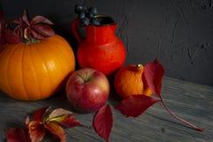 Συγκομιδή φθινοπώρου και ζωή ημέρας των ευχαριστιών διακοπών ακόμα στοκ φωτογραφίες με δικαίωμα ελεύθερης χρήσης