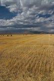 συγκομιδή Idaho στοκ εικόνες