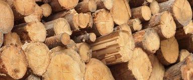 Συγκομιδή ξυλείας για τη βιομηχανία ή την ξύλινη κατοικία Constru ξυλείας Στοκ εικόνες με δικαίωμα ελεύθερης χρήσης