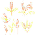 Συγκομιδή σιταριού σίτου σχεδίων Στοκ εικόνα με δικαίωμα ελεύθερης χρήσης