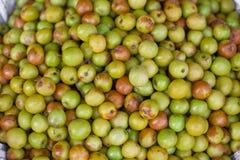 Συγκομιδή των μήλων στοκ φωτογραφία με δικαίωμα ελεύθερης χρήσης