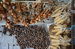 Συγκομιδή των ξύλων καρυδιάς, των κρεμμυδιών και του καλαμποκιού Στοκ Φωτογραφία