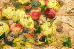 Συγκομιδή φθινοπώρου - αφηρημένη διακόσμηση φθινοπώρου Στοκ φωτογραφία με δικαίωμα ελεύθερης χρήσης