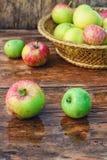 Συγκομιδή φθινοπώρου των μήλων Στοκ εικόνα με δικαίωμα ελεύθερης χρήσης