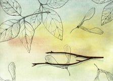 Συγκομιδή φθινοπώρου Στοκ εικόνες με δικαίωμα ελεύθερης χρήσης