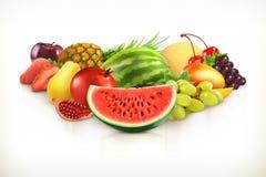 Συγκομιδή, juicy φρούτα και μούρα διανυσματική απεικόνιση
