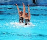 Συγχρονισμένη κολύμβηση Στοκ εικόνα με δικαίωμα ελεύθερης χρήσης