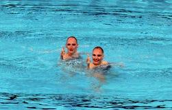 Συγχρονισμένη κολύμβηση Στοκ φωτογραφία με δικαίωμα ελεύθερης χρήσης