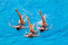 Συγχρονισμένος κολυμπήστε το πόδι τριών χορού θέτει τη φωτογραφία Στοκ Εικόνες