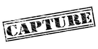 Συλλάβετε το μαύρο γραμματόσημο διανυσματική απεικόνιση
