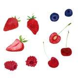 Συλλογή βακκινίων θερινών φρέσκια γλυκιά strowberry σμέουρων ελεύθερη απεικόνιση δικαιώματος