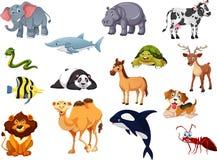 Συλλογή κινούμενων σχεδίων ζώων μια για τα παιδιά Στοκ Φωτογραφία