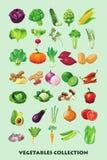 Συλλογή κινούμενων σχεδίων λαχανικών για τα παιδιά Στοκ φωτογραφία με δικαίωμα ελεύθερης χρήσης