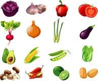 Συλλογή κινούμενων σχεδίων λαχανικών μια για τα παιδιά Στοκ Φωτογραφίες