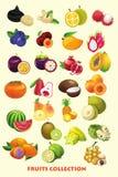 Συλλογή κινούμενων σχεδίων φρούτων για τα παιδιά Στοκ Φωτογραφία