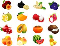 Συλλογή κινούμενων σχεδίων φρούτων μια για τα παιδιά Στοκ Φωτογραφίες
