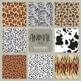 Συλλογή οκτώ διανυσματικών άνευ ραφής σχεδίων με το ζωικό με ραβδώσεις δερμάτων, λεοπάρδαλη, ιαγουάρος, giraffe αγελάδα ελεύθερη απεικόνιση δικαιώματος