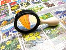 συλλογή πιό magnifier Στοκ Εικόνες