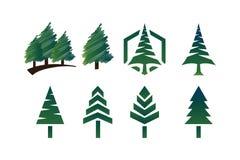 Συλλογή του δέντρου πεύκων Στοκ Εικόνες