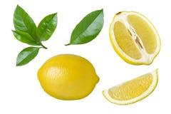 Συλλογή του φρέσκων λεμονιού και των φετών με τα φύλλα που απομονώνονται στο λευκό Στοκ φωτογραφία με δικαίωμα ελεύθερης χρήσης