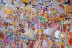 Συλλογή των διαφορετικών ζωηρόχρωμων θαλασσινών κοχυλιών ως υπόβαθρο στοκ εικόνα