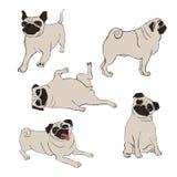 Συλλογή των εικονιδίων σκυλιών μαλαγμένου πηλού ελεύθερη απεικόνιση δικαιώματος