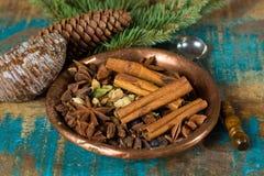 Συλλογή των καρυκευμάτων για το χειμώνα και τις ημέρες των Χριστουγέννων, που χρησιμοποιείται για το bak Στοκ Εικόνες