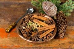 Συλλογή των καρυκευμάτων για το χειμώνα και τις ημέρες των Χριστουγέννων, που χρησιμοποιείται για το bak Στοκ Φωτογραφία