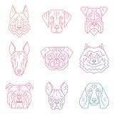 Συλλογή των κεφαλιών σκυλιών ` s που δημιουργούνται στο απλό γεωμετρικό ύφος Στοκ εικόνα με δικαίωμα ελεύθερης χρήσης