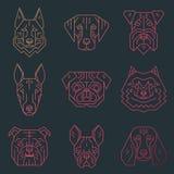 Συλλογή των κεφαλιών σκυλιών ` s που δημιουργούνται στο απλό γεωμετρικό ύφος Στοκ Εικόνες