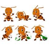 Συλλογή των κινούμενων σχεδίων μυρμηγκιών διανυσματική απεικόνιση