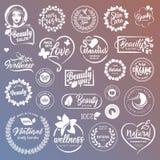 Συλλογή των σημαδιών και των στοιχείων για τα φυσικά καλλυντικά και τα προϊόντα ομορφιάς ελεύθερη απεικόνιση δικαιώματος