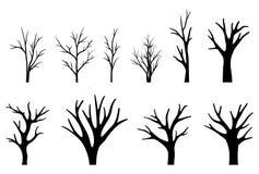 Συλλογή των σκιαγραφιών δέντρων στο άσπρο υπόβαθρο διανυσματική απεικόνιση