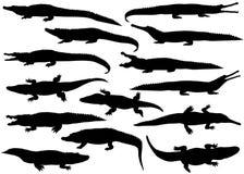 Συλλογή των σκιαγραφιών των κροκοδείλων Διανυσματική απεικόνιση