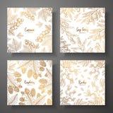 Συλλογή των τετραγωνικών χρυσών καρτών με τα μούρα Διανυσματικό εκλεκτής ποιότητας πλαίσιο με τη σταφίδα, μούρα goji, σμέουρο, ro απεικόνιση αποθεμάτων