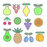 Συλλογή των χρωματισμένων εικονιδίων των φρούτων και των μούρων Πρότυπο οργανικής τροφής Στοκ φωτογραφία με δικαίωμα ελεύθερης χρήσης
