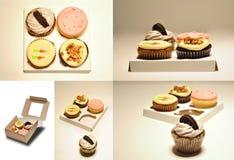 συλλογή cupcakes Στοκ φωτογραφία με δικαίωμα ελεύθερης χρήσης