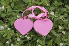 Συμβολίζει την αγάπη δύο καρδιών στοκ εικόνες