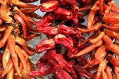 συμβολοσειρά πιπεριών Στοκ Εικόνες