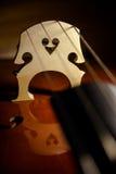 Συμβολοσειρές καρδιών Στοκ Εικόνες