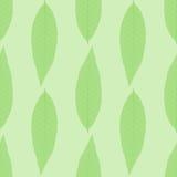 Συμμετρικό άνευ ραφής υπόβαθρο των πράσινων φύλλων Στοκ Εικόνα